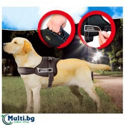 Спортен нагръдник за куче